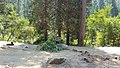 170918-FS-Tahoe-001 (36811000654).jpg