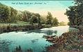 1910 - Cedar Creek.jpg