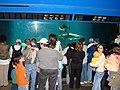2008-05-17 Coney Island, Long Island 027 Coney Island, New York Aquarium (2677905103).jpg