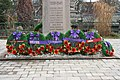 2012 Remembrance Day, Stirling, Ontario 7939 (8176341142).jpg
