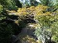 20131012 10 Miyajima (10491691545).jpg