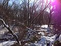 2014-01-23 10 37 14 View south along the West Branch Shabakunk Creek.JPG