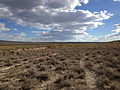2014-10-20 15 48 28 View southwest from the California Trail - Thousand Springs Creek marker along Wilkins-Montello Road (Elko County Route 765) about 14.7 miles east of U.S. Route 93 in Elko County, Nevada.JPG
