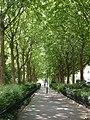 2015-05-29 Paris, Parc Montsouris 04.jpg