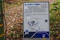 20191102Rundweg Historischer Halberg 09.jpg