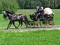 21te Rammenauer Schlossrundfahrt der Pferdegespanne (022).jpg