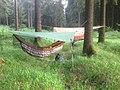 2 hammocks.jpg