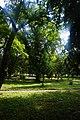 46-209-5001 парк в комарно.jpg
