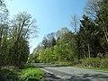 59192 Bergkamen, Germany - panoramio (8).jpg