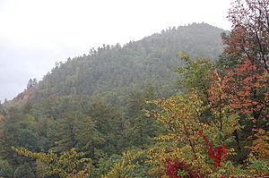Tongue Mountain Range Trails - Five Mile Mountain summit