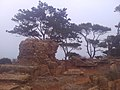 64CESAEREE today TIPAZA .The ancient Roman city in Algeria.jpg