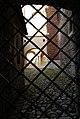 7460vik Wawel. Foto Barbara Maliszewska.jpg