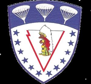 781st Bombardment Squadron - Emblem of the 781st Troop Carrier Squadron