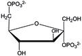 A-D-fructose-2,6-bisphosphate.tif