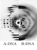 DNA X-ray patterns
