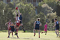 AFL Bond University Bullsharks (17960617559).jpg