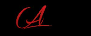Description de l'image ALLEZGO Logo.png.
