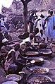 ASC Leiden - W.E.A. van Beek Collection - Dogon markets 02 - Meat snacks at Tireli market, Mali 1990.jpg