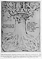 A decade of progress in Eugenics. Scientifi Wellcome L0032341.jpg