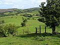 A distant Cold Hill Farm - geograph.org.uk - 865788.jpg