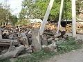 A fuel wood stall.JPG