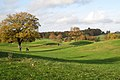 A green on the King's Course, The Warwickshire - geograph.org.uk - 1583505.jpg
