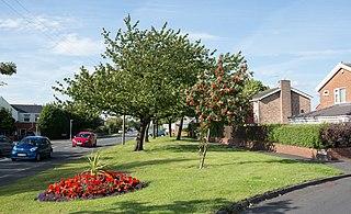 Ouston, County Durham