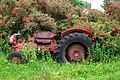 Abandoned tractor - geograph.org.uk - 913674.jpg