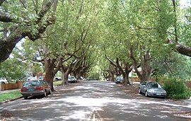 AbbottStreet,NewFarm,Queensland