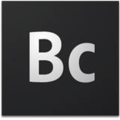Adobe Business Catalyst logo (2012).png