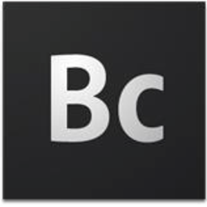Business Catalyst - Image: Adobe Business Catalyst logo (2012)