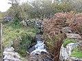 Afon Clegir - geograph.org.uk - 271541.jpg