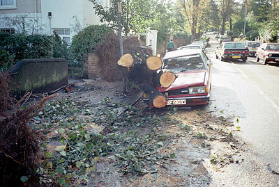 October 16: aftermath of the Great Storm of 1987. Aftermath of the Great Storm of 1987.jpg