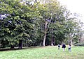 Afternoon stroll on Dinedor Hill - geograph.org.uk - 564717.jpg