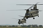 Air Cav reaches pinnacle during flight training exercise DVIDS314800.jpg