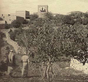 Al-Qubeiba, Jerusalem - al-Qubeiba during the British Mandate