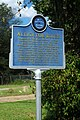 Alligator Blues Sign - MS802 (45281737311).jpg