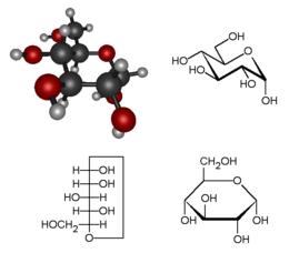 Molecuul Wikipedia