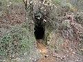 Altamira 1 mehategia.jpg