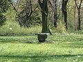 Alter Brunnen.jpg