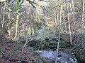 Alum Scar wood - panoramio (5).jpg