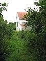 An overgrown path - geograph.org.uk - 1393107.jpg