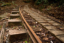 Anbo Forest Railway 04.jpg