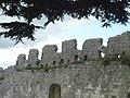 Ancien château de Montrichard - créneaux.jpg