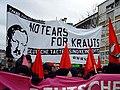Antideutsche rassisten.jpg