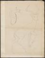 Antilope bubalis - 1700-1880 - Print - Iconographia Zoologica - Special Collections University of Amsterdam - UBA01 IZ21400121.tif