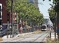 Antwerpen - Antwerpse tram, 23 juli 2019 (141, Londenstraat, station Londen).JPG