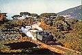 Araya MountLebanon 1967.jpg