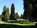 Arboretum - panoramio (4).jpg