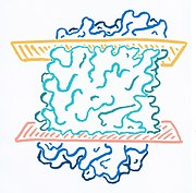 Tertiary structure surface model of Archaerhodopsin.